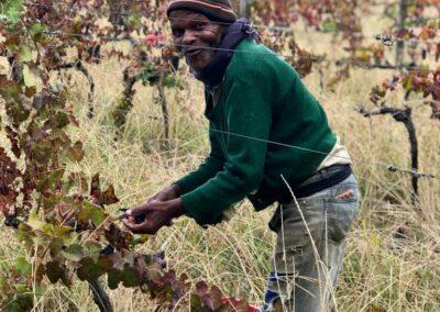 Wine-making-courchevel-02